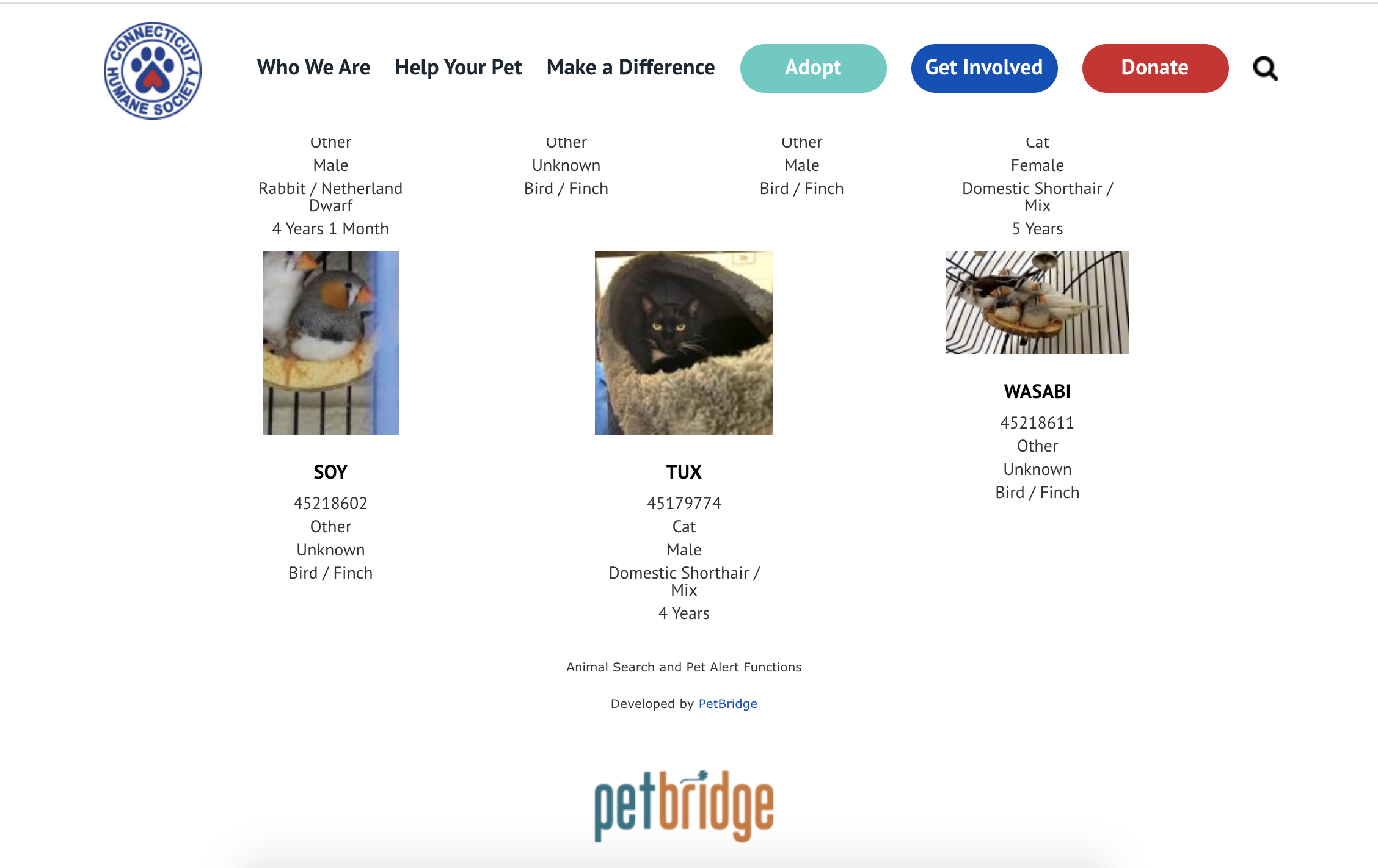 A display of adoptable pets from the Connecticut Humane Society