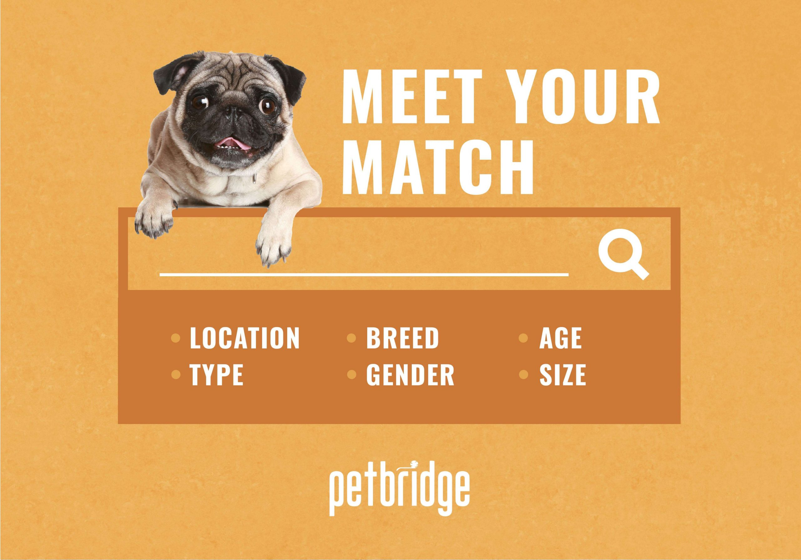 Pet Alerts from PetBridge notify users when an animal that meets their interest is in a shelter