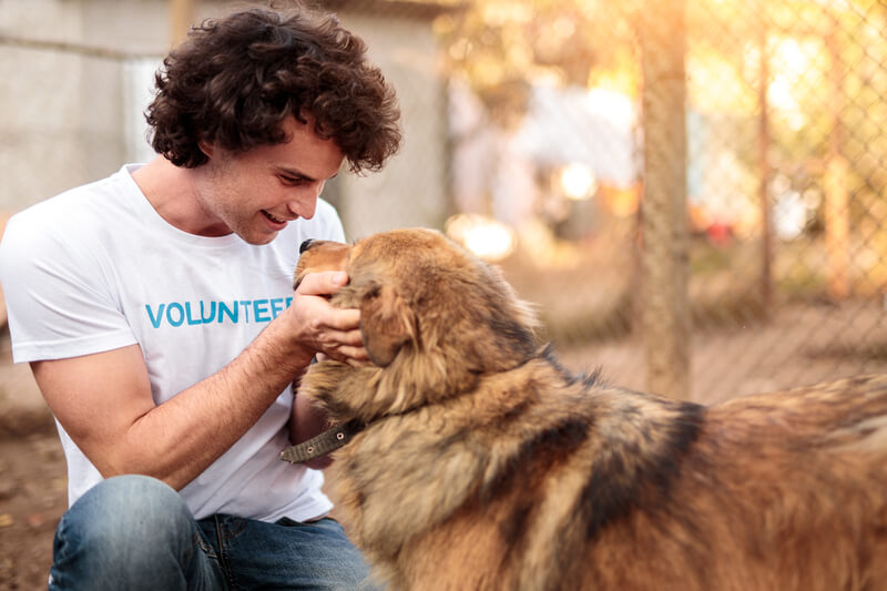 An animal shelter worker pets a dog